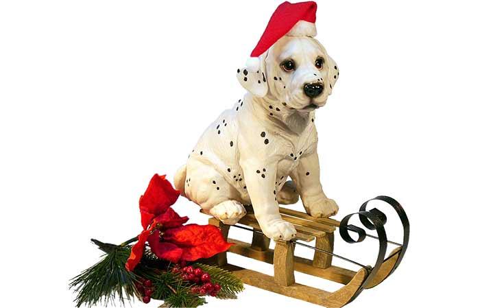 Christmas pet names