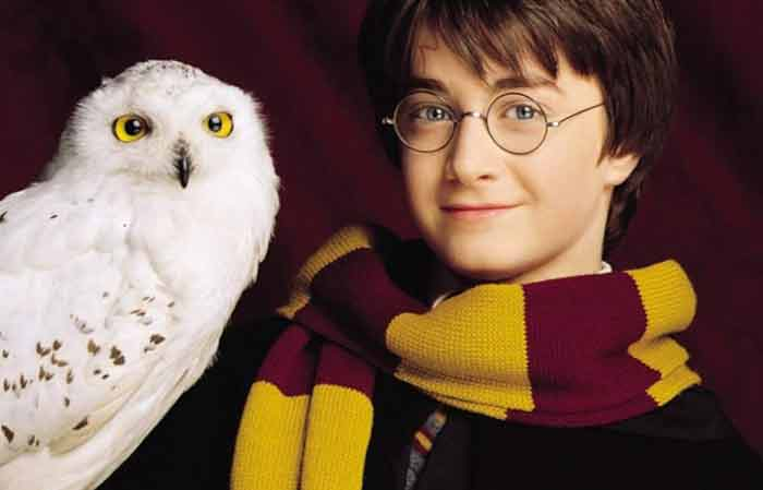 Pet names based on Harry Potter Series