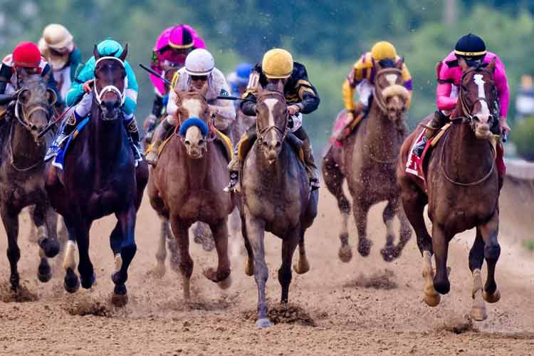 Horse racing event