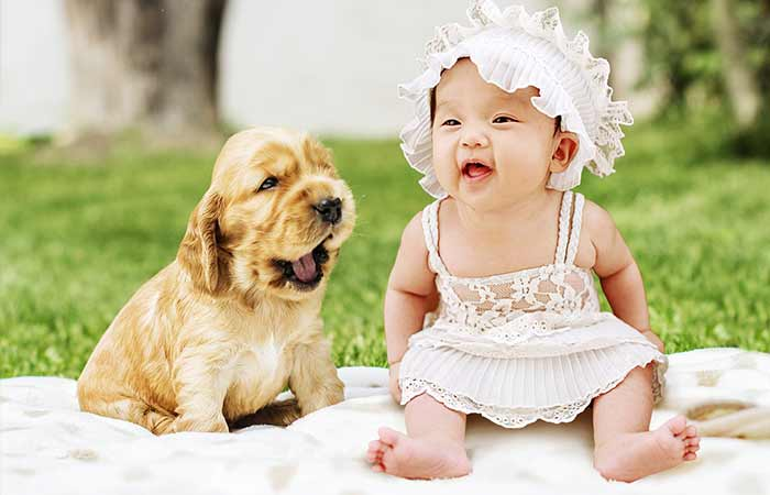 Cute puppy and baby